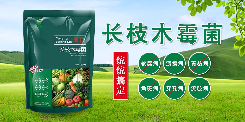 河南沃肽美农业科技有限公司3.jpg