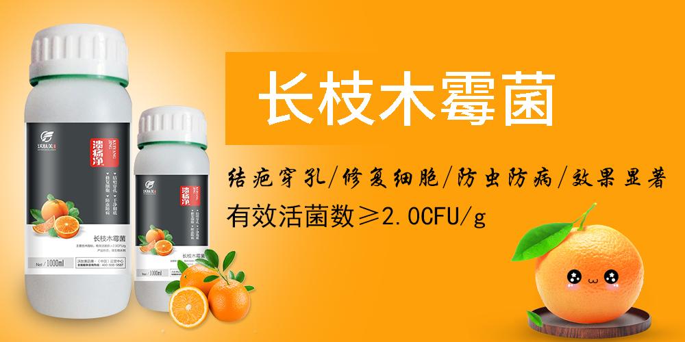 河南沃肽美农业科技有限公司网站.jpg